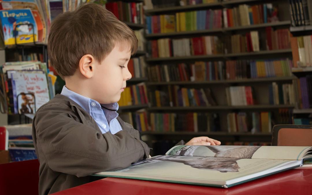 25 octobre 2021, journée nationale des bibliothèques scolaires